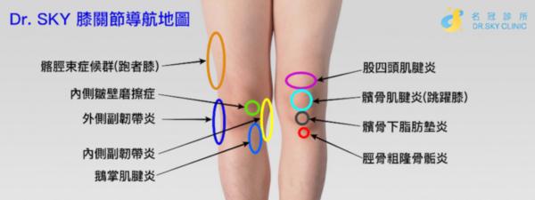 膝關節痛位置圖 膝蓋前側